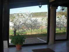 Cerezos en Flor Abril 2011 en Covarrubias desde Hotel Doña Sancha