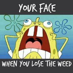 When You Lost The WEED!! #CannabisStrain #Marijuana #Cannabis #Proposition64 #LegalizeIt #PotValet #California #MedicalMarijuana #MarijuanaMovement #santabarbara #carpinteria #Goleta #Montecito