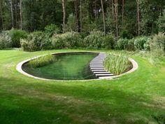 ▷ ideas and garden pond pictures for your dream garden - Gartenteich Natural Swimming Ponds, Natural Pond, Swimming Pools, Water Plants, Water Garden, Garden Ponds, Bog Garden, Koi Ponds, Pool Plants