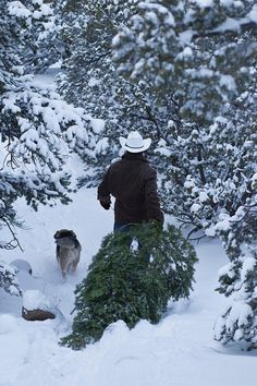 We always went to the woods to get a cedar tree to use for our Christmas tree. There's just nothing like that smell of fresh cut cedar!