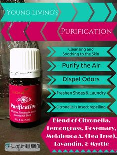 Young Living's Purification. Cleanising and soothing to the skin, purify the air, dispel odors, freshen shoes and laundry, citronella is insect repelling. #essentialoils #undertwentydollars #heartfelthullabaloo