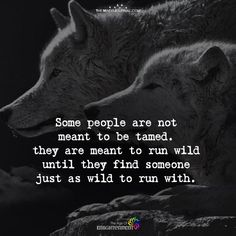 My brother and I and his wolf.but he was to wild for me.he was to wild for everyone. Strong Quotes, True Quotes, Motivational Quotes, Inspirational Quotes, Dark Quotes, Lone Wolf Quotes, Wolf Pack Quotes, Animal Crossing, Wolf Spirit Animal