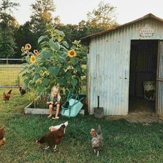 the art of slow living Country Life, Country Living, Dream Garden, Home And Garden, Future Farms, Hobby Farms, Slow Living, Farm Life, Farm House