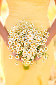 bouquet sposa camomilla