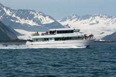 Kenai Fjords Tour