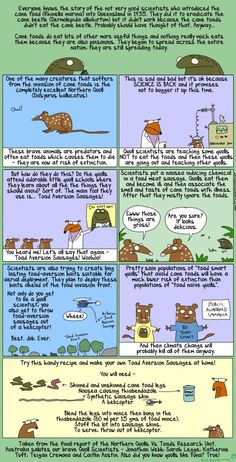 First Dog on the Moon Quolls Since is back to educate Qualls on cane toads June 2015