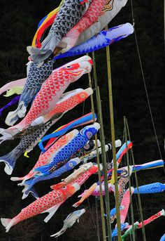 it's a heart heart season: May is Children's Day. I love the koi wind socks.