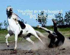My trainer wouldn't even think of the hospital she'd just tell me to get my horse cowgirl up and get back on Funny Horse Memes, Funny Horses, Cute Horses, Horse Love, Beautiful Horses, Funny Animals, Horse Puns, Funny Cats, Equine Quotes