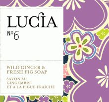 Collection | Lucia Home