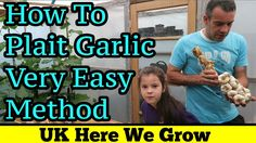 How To Plait or Braid Soft Neck Garlic Bulbs  Easy Step By Step Method