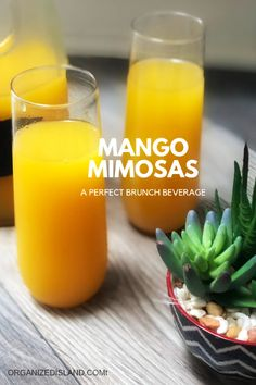 Flavorful and delicious Mango Mimosas - delicious brunch or breakfast drink. Also great for showers and parties. Flavorful and delicious Mango Mimosas - delicious brunch or breakfast drink. Also great for showers and parties. Brunch Drinks, Summer Cocktails, Cocktail Drinks, Italian Cocktails, Pina Colada, Mango Mimosa Recipe, Strawberry Banana Milkshake, Raspberry Cocktail, Best Cocktail Recipes