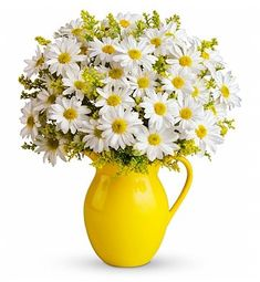 Fresh Cut Flowers - Sunny Day Pitcher of Daisies Bouquet Easter Flowers, Summer Flowers, Fresh Flowers, Beautiful Flowers, Happy Flowers, Send Flowers, White Flowers, Birth Month Flowers, Birth Flower