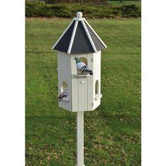 Pigeonnier blanc, fabriqué en bois de pin avec un toit en bitume.  Ce pigeonnier est adapté pour abriter différents types de pigeons domestiques. Le meilleur endroit pour placer le pigeonnier est un endroit calme et quelque peu abrité, avec une voie d'approche libre pour les pigeons. Il est important de nettoyer le pigeonnier au moins une fois par semaine. Placez le pigeonnier sur un poteau d'une épaisseur de 9 cm et d'une longueur de 4 mètres (poteau non fourni). Esschert Design, Bird Houses, Important, Outdoor Decor, Home Decor, Garden, Pigeon Loft, Exterior Decoration, White People