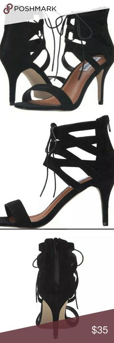 BNWOT STEVE MADDEN Shoes. Exellent condition never worn  :) Style FRANKII Steve Madden Shoes
