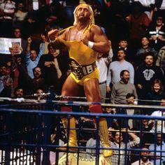 Wwe Hulk Hogan, Wwe Wallpapers, Wrestling Superstars, Wwe News, Professional Wrestling, Mma, All Star, Hero, Classic