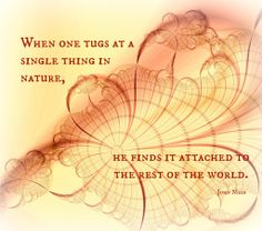 When one tugs at a single thing in nature john muir Book Of Remembrance, Family Mission Statements, Mother Nature Quotes, Save Nature, Good Sentences, We Are All Connected, John Muir, Spiritual Wisdom, Rest Of The World
