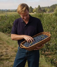 Tips for growing blueberries, raspberries, blackberries ....