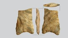 10,000-year-old stone tools with #animal tissue residue unearthed in #Washington State.