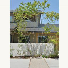 アオダモ もみじのコラボ Japan Modern House, Random House, Garden Trees, Landscape Design, Facade, Entrance, Yard, Exterior, Architecture