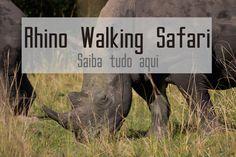 É possível fazer um safari, a pé, para ver rinocerontes. Saiba tudo aqui. Safari, Animals, Everything, Rhinos, Animales, Animaux, Animal, Animais