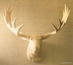 Our Carved Wood Moose Head is a stunning conversation piece, made without harming any animals in the process. Each moose is hand-carved one piece at a time from solid basswood. The mellow and amused demeanor of this bull moose never fails to attract attention. There may be some slight variation in color, texture and finish, as found in nature and these are not considered flaws.