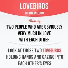 """Lovebirds"" are two ​people who are ​obviously very much in ​love with each other. Example: Look at those two lovebirds ​holding ​hands and ​gazing into each other's ​eyes."
