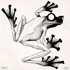 Evan Lovejoy Art , Wallace's flying frog study - the wiki article on these guys starts by saying how photogenic they are… If I had a wiki article I'd be happy if it said. Animal Sketches, Animal Drawings, Cool Drawings, Tattoo Drawings, Art Sketches, Frog Tattoos, Body Art Tattoos, Dessin Old School, Posca Art