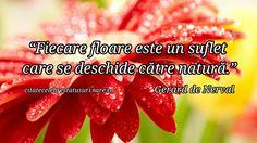 """""""Fiecare floare este un suflet care se deschide catre natura."""" Gerard de Nerval"""