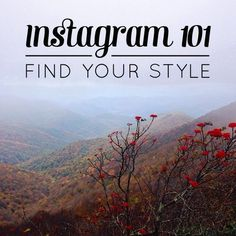 This is a great blog post about finding your style in Instagram.   Instagram 101: Find your style // Feast + West