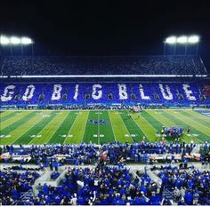 Ever since I've known how to talk I have been a Kentucky wildcats fan. I am very passionate about Kentucky football and basketball. Kentucky has been a huge part of my entire life. Uk Football Teams, University Of Kentucky Football, Kentucky Sports, Kentucky Basketball, Football And Basketball, Football Stadiums, Kentucky Wildcats, Football Field, College Basketball