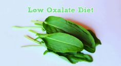 Low Oxalate Diet & #Histaminintoleranz