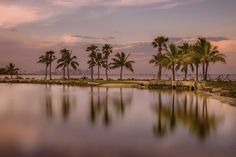 https://flic.kr/p/JCykUV | postcard beach-Miami