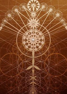 Joma Sipe - Sacred Geometry --This world is really awesome.
