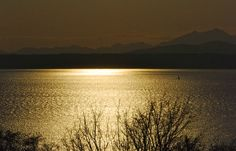 A single sailboat on Puget Sound before sunset. Copyright©2012 Robinson Newspapers