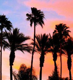 Trending Now | Coachella Street Style