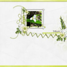 """Kit - """"You Are A Gem: August' by Marie H Designs http://www.mesoscrappy.com/shoppe/-You-are-a-Gem-August.html  Template - 'Itty Bitties Templates' by Jac http://www.mesoscrappy.com/shoppe/Itty-Bitties.html  Font - Century Gothic."""