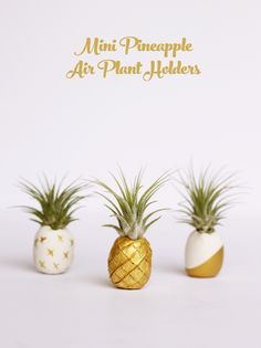Mini pineapple air plant holders. Kids love making this easy clay craft!