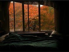 Imagem de autumn, bed, and bedroom
