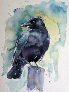 ARTFINDER: Crow II by Kovács Anna Brigitta - Original watercolour painting on high quality watercolour paper. I love landscapes, still life, nature and wildlife, lights and shadows, colorful sight. Thes...