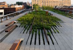 Interface Reconnect   Inspired by a common desire to reconnect people and spaces with nature