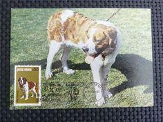 ROMANIA MK HUNDE BERNHARDINER HUND DOG MAXIMUMKARTE MAXIMUM CARD MC CM c4853