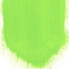 Tg Green No. 99 Paint   Designers Guild