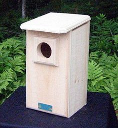 Saw-whet and Screech Owl House