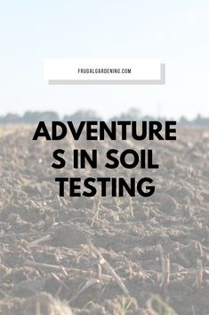Adventures in Soil Testing - Frugal Gardening Planting, Gardening, Cold Hard Cash, Build Your Brand, Interesting Reads, Crypto Currencies, Diy Stuff, How To Get Rid, Frugal Living