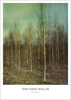 Birches poster från Dan Isaac Wallin hos ConfidentLiving.se