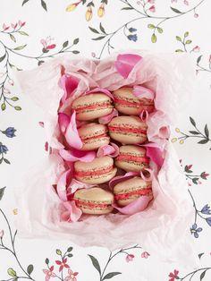 vanilla-raspberry macaroons.