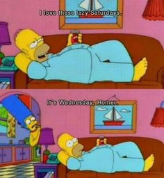 It's Wednesday, Homer.