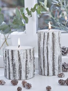 This season's must-have candles take their cue form the forests of Scandinavia, their bark-effect wax finish cleverly crafted to look as rich and varied as nature intended.