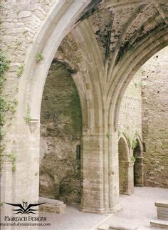 Jerpoint Abbey in Co. Kilkenney, Ireland gorgeous ruins of an old abbey