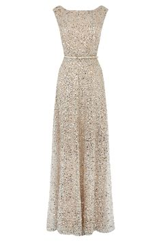 Nude neutral long gown belted shimmer Dresses | Greys DESIRE SEQUIN MAXI | Coast Stores Limited stunning!